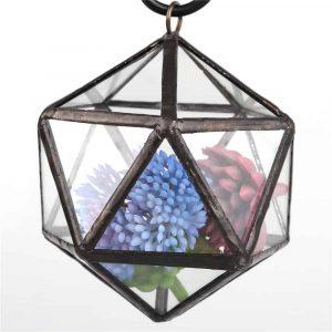 glass dodecahedron terrarium succulent