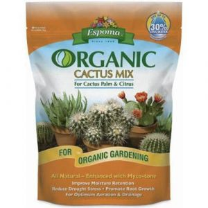 Best Succulent and Cactus Soils