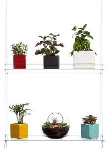 winterize succulent shelf